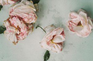 dried-flowers-1149191_960_720